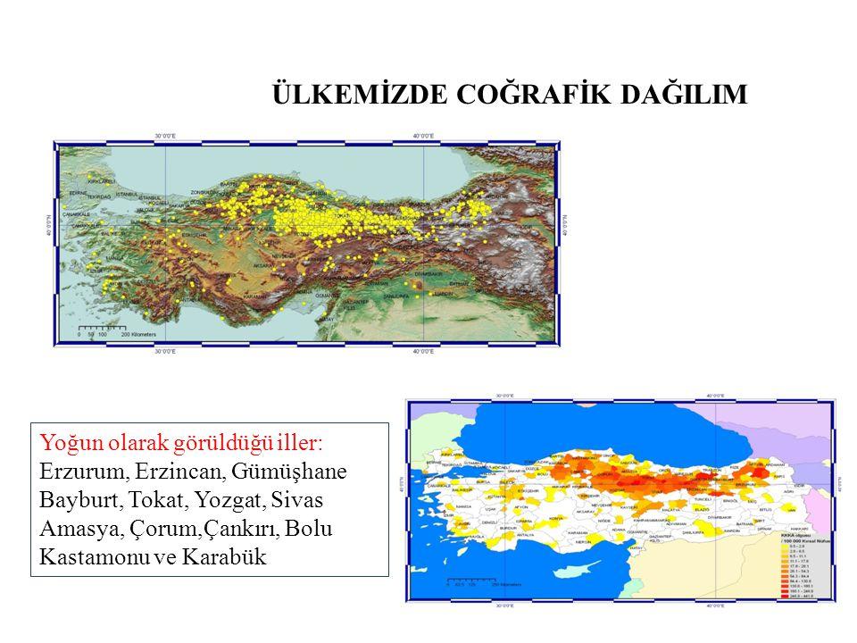 ÜLKEMİZDE COĞRAFİK DAĞILIM Yoğun olarak görüldüğü iller: Erzurum, Erzincan, Gümüşhane Bayburt, Tokat, Yozgat, Sivas Amasya, Çorum,Çankırı, Bolu Kastam