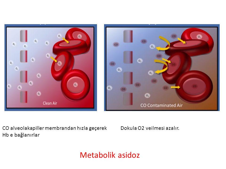 Dokula O2 veilmesi azalır.CO alveolakapiller membrandan hızla geçerek Hb e bağlanırlar Metabolik asidoz