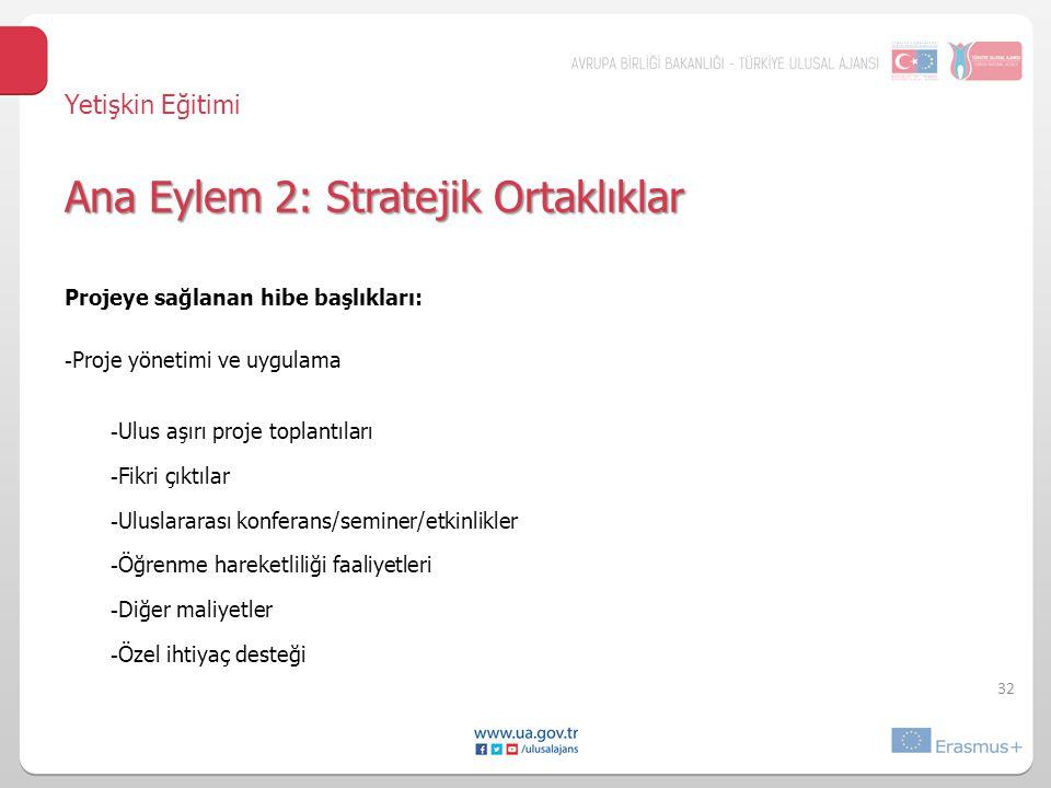 Projeye sağlanan hibe başlıkları: - Proje yönetimi ve uygulama - Ulus aşırı proje toplantıları - Fikri çıktılar - Uluslararası konferans/seminer/etkinlikler - Öğrenme hareketliliği faaliyetleri - Diğer maliyetler - Özel ihtiyaç desteği 32 Ana Eylem 2: Stratejik Ortaklıklar Yetişkin Eğitimi Ana Eylem 2: Stratejik Ortaklıklar
