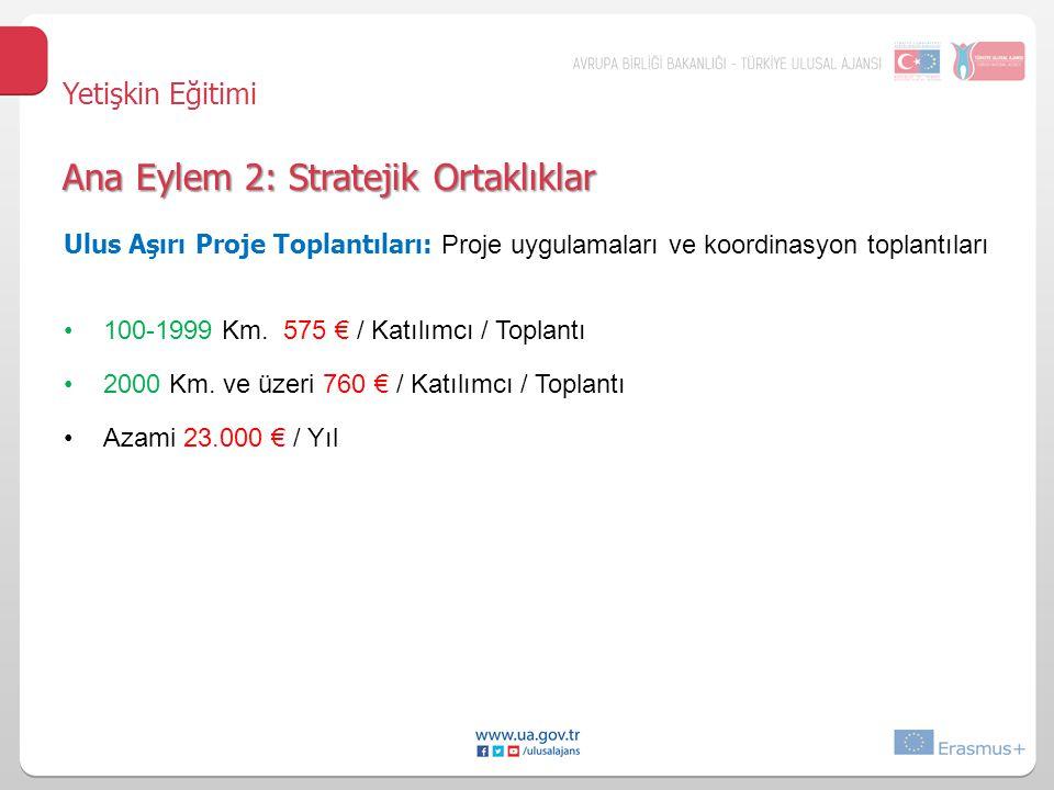 Ulus Aşırı Proje Toplantıları: Proje uygulamaları ve koordinasyon toplantıları 100-1999 Km.