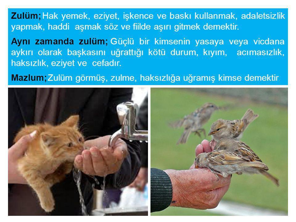 Rasulullah (sav); Aziz ve Celil olan Allah şöyle buyuruyor: Ey kullarım.
