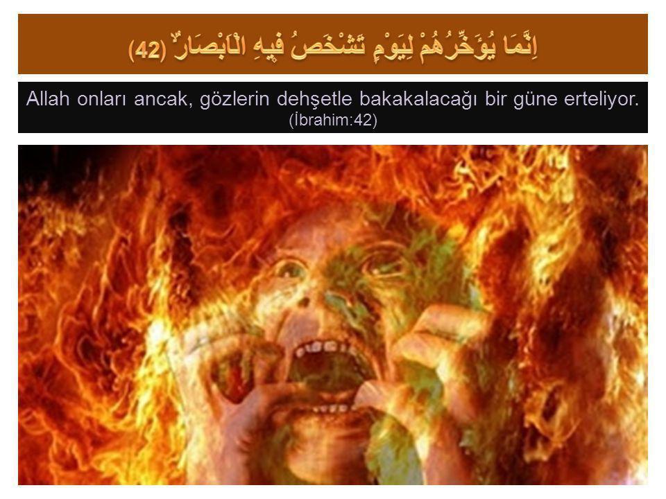 Allah onları ancak, gözlerin dehşetle bakakalacağı bir güne erteliyor. (İbrahim:42)