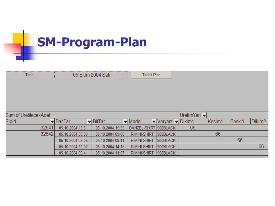 SM-Program-Plan
