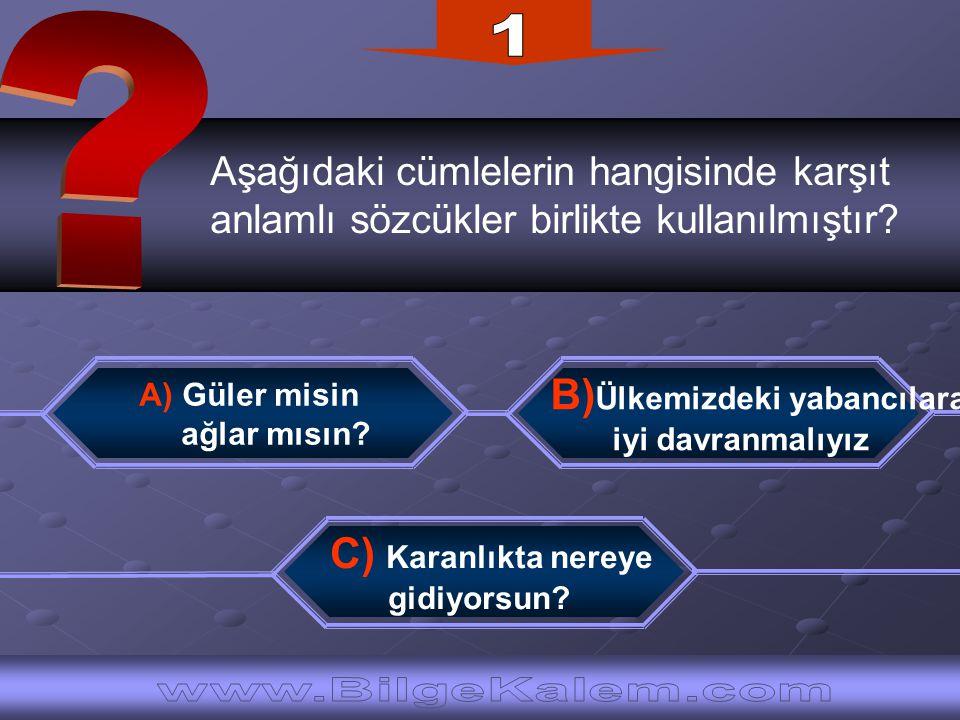 Aşağıdaki cümlelerin hangisinde karşıt anlamlı sözcükler birlikte kullanılmıştır? C) Karanlıkta nereye gidiyorsun? B) Ülkemizdeki yabancılara iyi davr