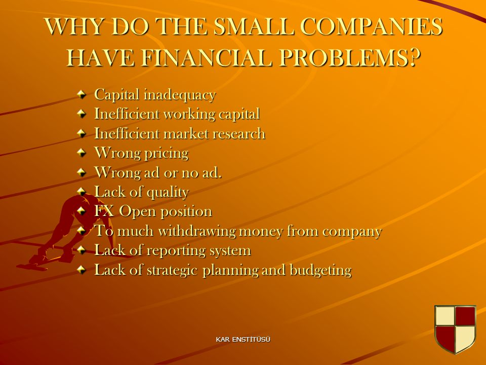 KAR ENSTİTÜSÜ 22 WHY DO THE SMALL COMPANIES HAVE FINANCIAL PROBLEMS .