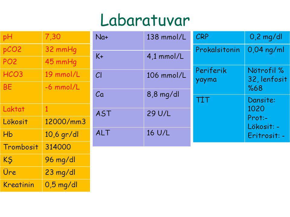 Labaratuvar pH7,30 pCO232 mmHg PO245 mmHg HCO319 mmol/L BE-6 mmol/L Laktat1 Lökosit12000/mm3 Hb10,6 gr/dl Trombosit314000 KŞ96 mg/dl Üre23 mg/dl Kreat