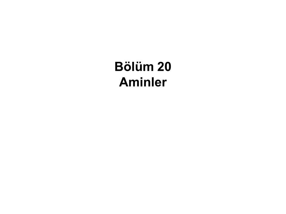 Bölüm 20 Aminler