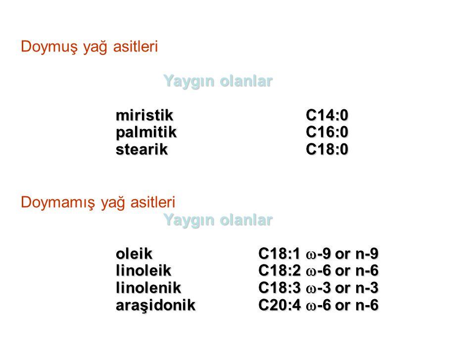 Doymuş yağ asitleri Yaygın olanlar miristikC14:0 palmitikC16:0 stearikC18:0 Doymamış yağ asitleri Yaygın olanlar oleikC18:1  -9 or n-9 linoleikC18:2  -6 or n-6 linolenikC18:3  -3 or n-3 araşidonik C20:4  -6 or n-6