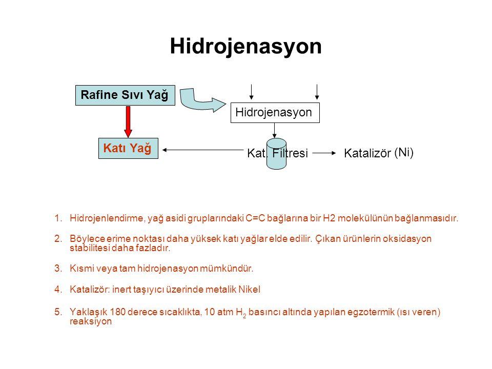Rafine Sıvı Yağ Hidrojenasyon Kat.