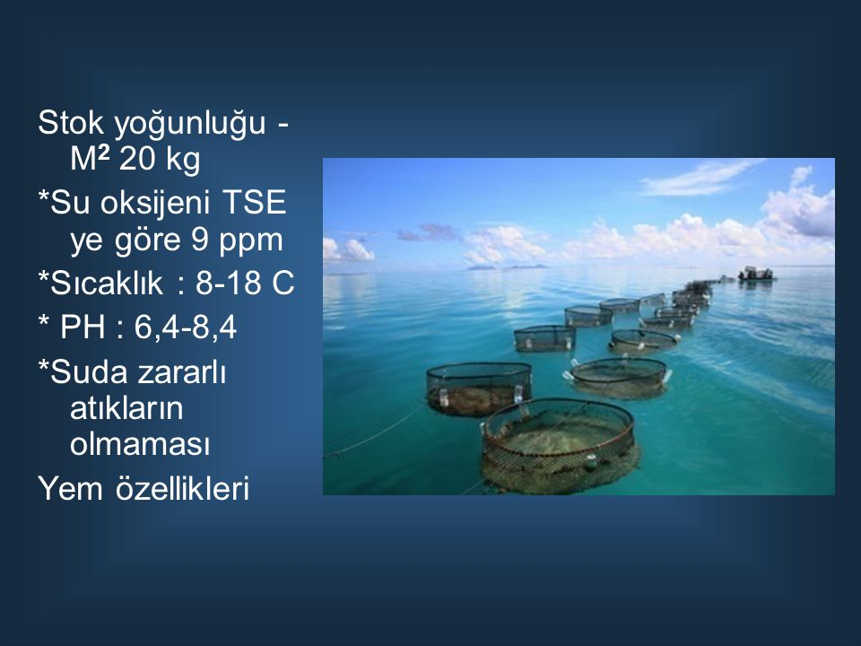 Stok yoğunluğu - M 2 20 kg *Su oksijeni TSE ye göre 9 ppm *Sıcaklık : 8-18 C * PH : 6,4-8,4 *Suda zararlı atıkların olmaması Yem özellikleri