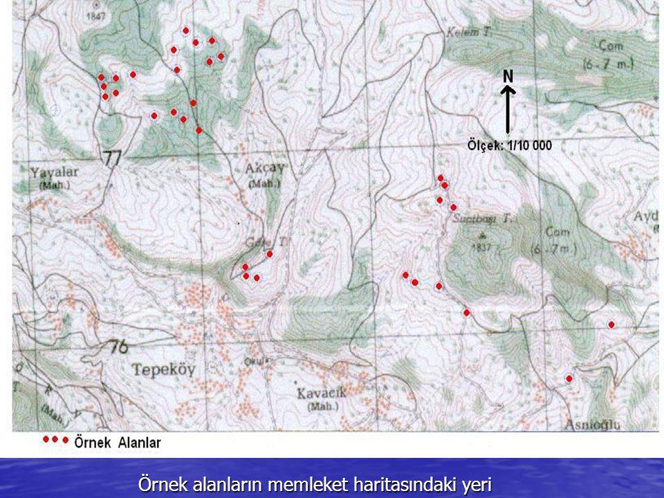 Örnek alanların memleket haritasındaki yeri Örnek alanların memleket haritasındaki yeri