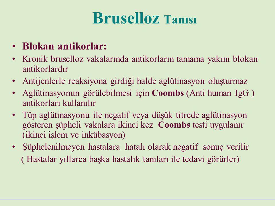 Bruselloz Tanısı Blokan antikorlar: Kronik bruselloz vakalarında antikorların tamama yakını blokan antikorlardır Antijenlerle reaksiyona girdiği halde aglütinasyon oluşturmaz Aglütinasyonun görülebilmesi için Coombs (Anti human IgG ) antikorları kullanılır Tüp aglütinasyonu ile negatif veya düşük titrede aglütinasyon gösteren şüpheli vakalara ikinci kez Coombs testi uygulanır (ikinci işlem ve inkübasyon) Şüphelenilmeyen hastalara hatalı olarak negatif sonuç verilir ( Hastalar yıllarca başka hastalık tanıları ile tedavi görürler)