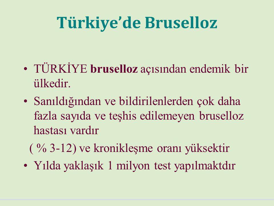 Türkiye'de Bruselloz TÜRKİYE bruselloz açısından endemik bir ülkedir.
