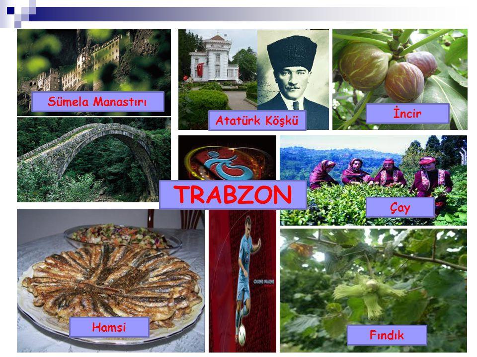 Trabzon Sümela Manastırı Atatürk Köşkü Hamsi Fındık İncir Çay TRABZON