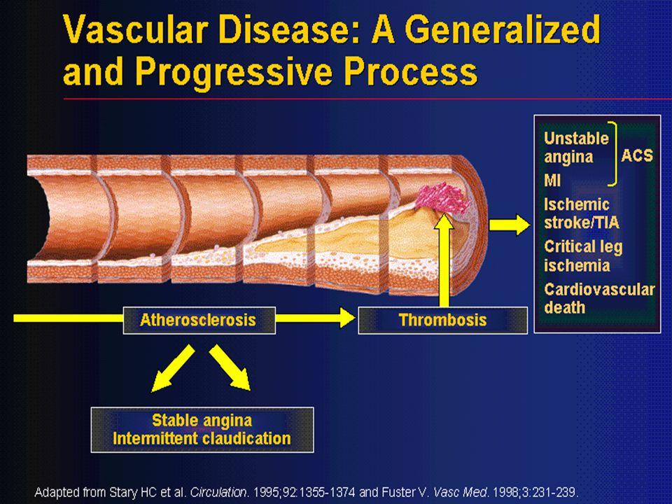 35 Etkiler  Vazodilatasyon (arteriyoller venüllerden daha duyarlı) –Arteriyoler dilatasyon (postşarj ↓↓) –Venöz dilatasyon (preşarj ↓)  Koroner vazodilatasyon  Negatif inotrop etki (oksijen tüketiminin azalması)  Bradikardi (dihidropiridinlerde taşikardi)  A-V iletimin yavaşlaması (- dromotrop etki) (verapamil ve diltiazem için)