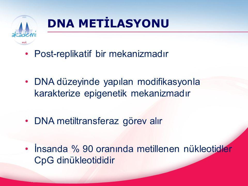 DNA METİLASYONU Post-replikatif bir mekanizmadır DNA düzeyinde yapılan modifikasyonla karakterize epigenetik mekanizmadır DNA metiltransferaz görev al