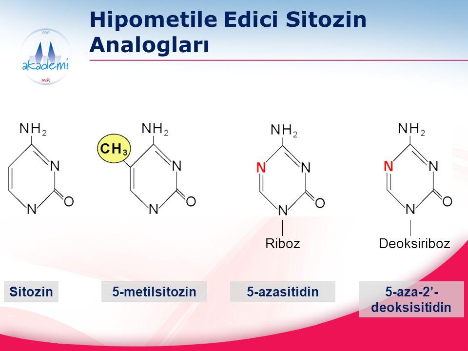 Desitabin ve Azasitidin 1964 te Çekoslovakya'da sentezlenmiştir 1 Her iki ajan da 1960 lı yılların sonlarında (preklinik) 2 ve 1970 li yıllarda (klinik) 3 araştırılmıştır Desitabin ve Azasitidin 2004 ve 2006 yılında MDS ve KMML için FDA onayı almıştır Peki bu ilaçların geliştirilmesinde neden bu kadar gecikme oldu.