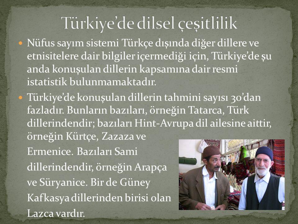 Nüfus sayım sistemi Türkçe dışında diğer dillere ve etnisitelere dair bilgiler içermediği için, Türkiye'de şu anda konuşulan dillerin kapsamına dair resmi istatistik bulunmamaktadır.