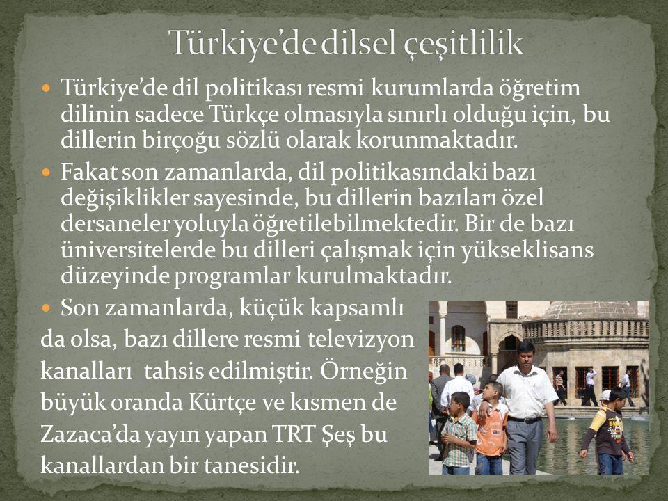 Türkiye'de dil politikası resmi kurumlarda öğretim dilinin sadece Türkçe olmasıyla sınırlı olduğu için, bu dillerin birçoğu sözlü olarak korunmaktadır.