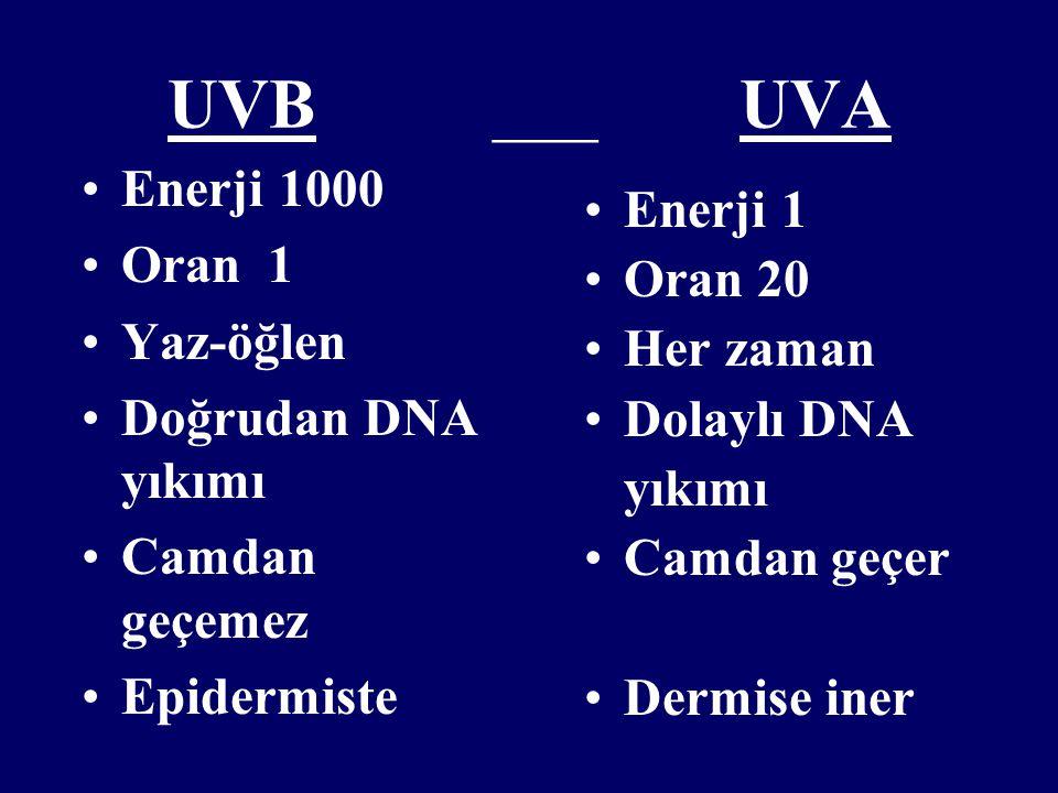 UVB ___ UVA Enerji 1000 Oran 1 Yaz-öğlen Doğrudan DNA yıkımı Camdan geçemez Epidermiste Enerji 1 Oran 20 Her zaman Dolaylı DNA yıkımı Camdan geçer Der