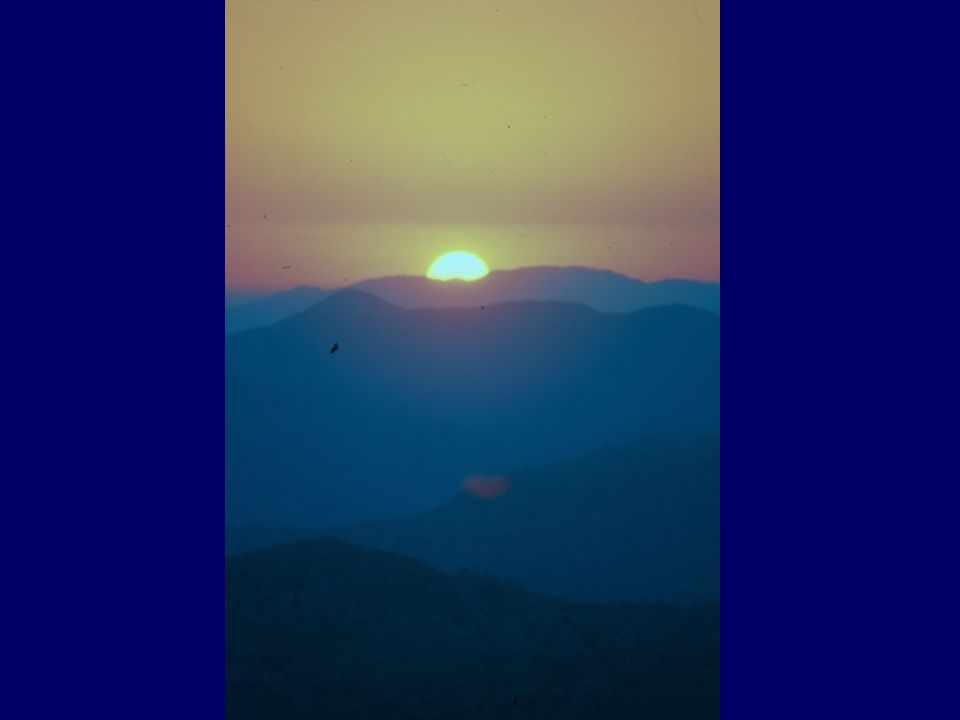 Güneşin Olumlu Etkileri Enerji Fotosentez D vit. Antibakteriyel Psoriasis vb. Yanık Ten Ruhsal etki