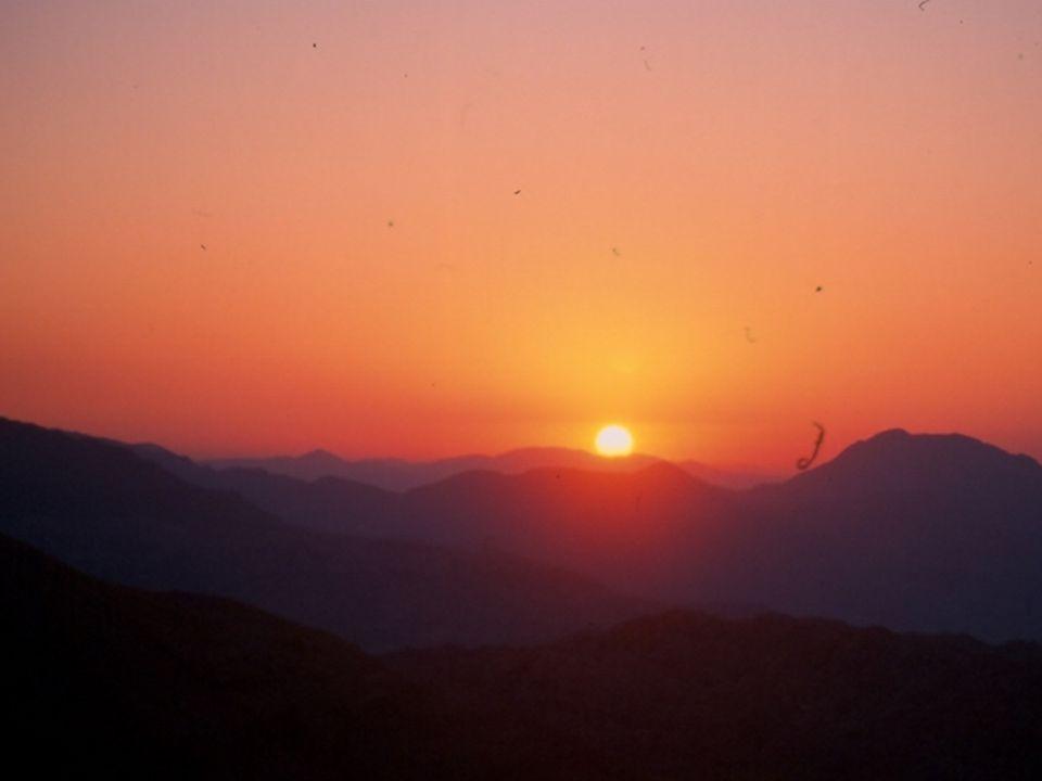Güneşin Olumsuz Etkileri Akut Güneş yanığı Fotoallerjik Fototoksik Bazı Hast.