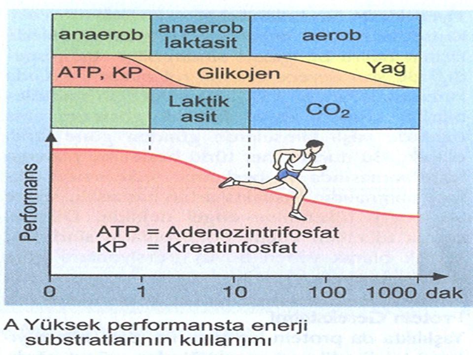%2…………………….performansı bozar %3…………………….kas dayanıklılığı azalır %4-6………………….kas gücü azalır %6 + ……………….sıcak kramplar,sıcak çarpması ve sakatlanmalar.