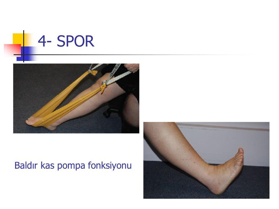 4- SPOR Baldır kas pompa fonksiyonu