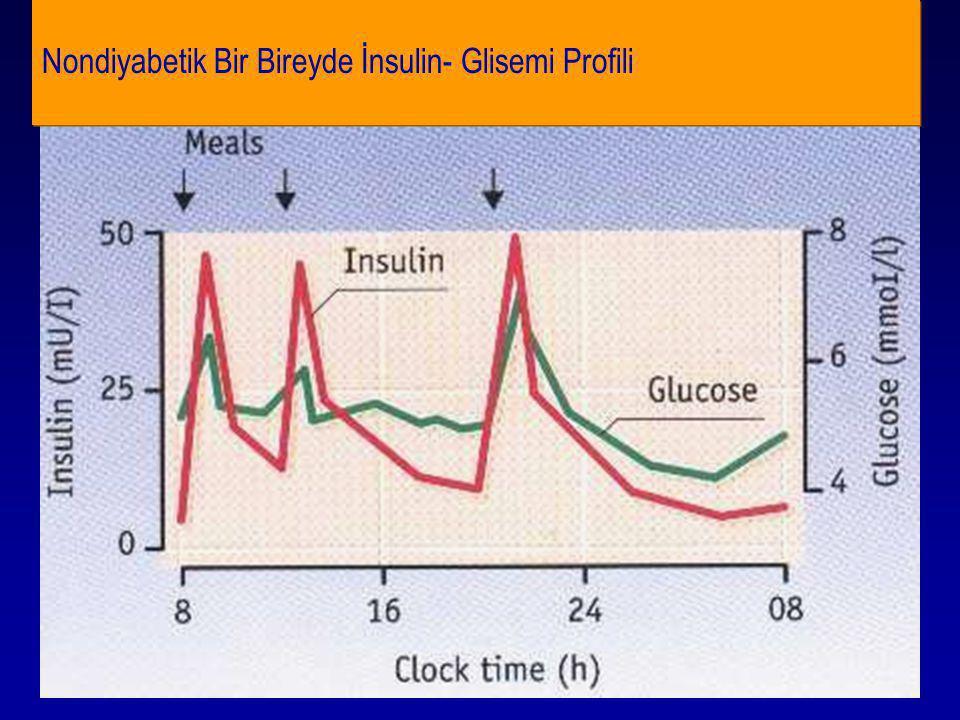 Nondiyabetik Bir Bireyde İnsulin- Glisemi Profili