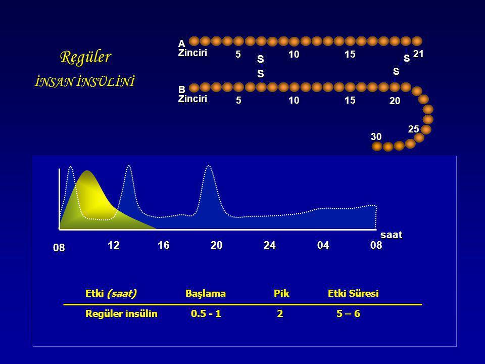 Etki (saat) Başlama Pik Etki Süresi Etki (saat) Başlama Pik Etki Süresi Regüler insülin 0.5 - 1 2 5 – 6 Regüler insülin 0.5 - 1 2 5 – 6 Regüler İNSAN
