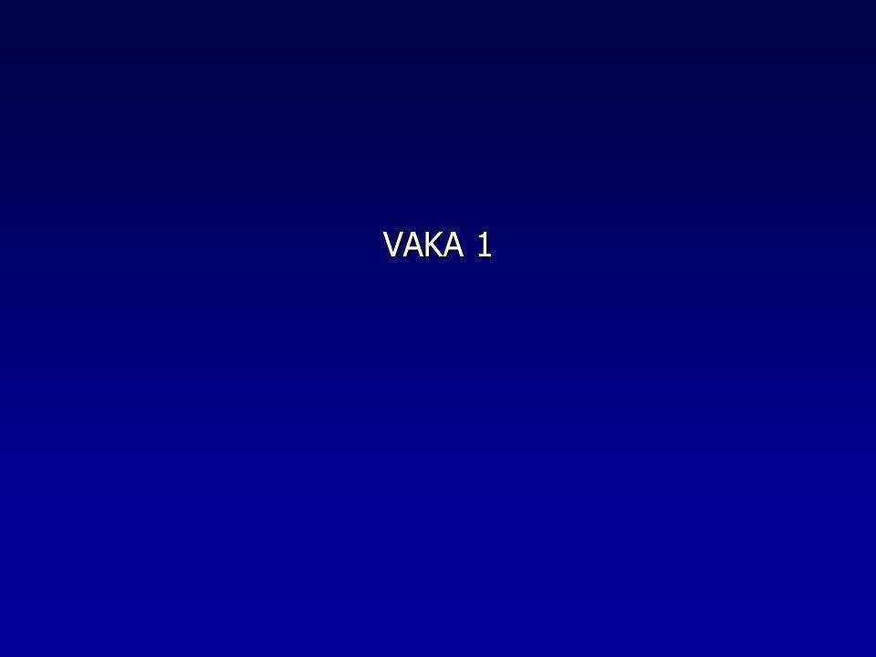 VAKA 1