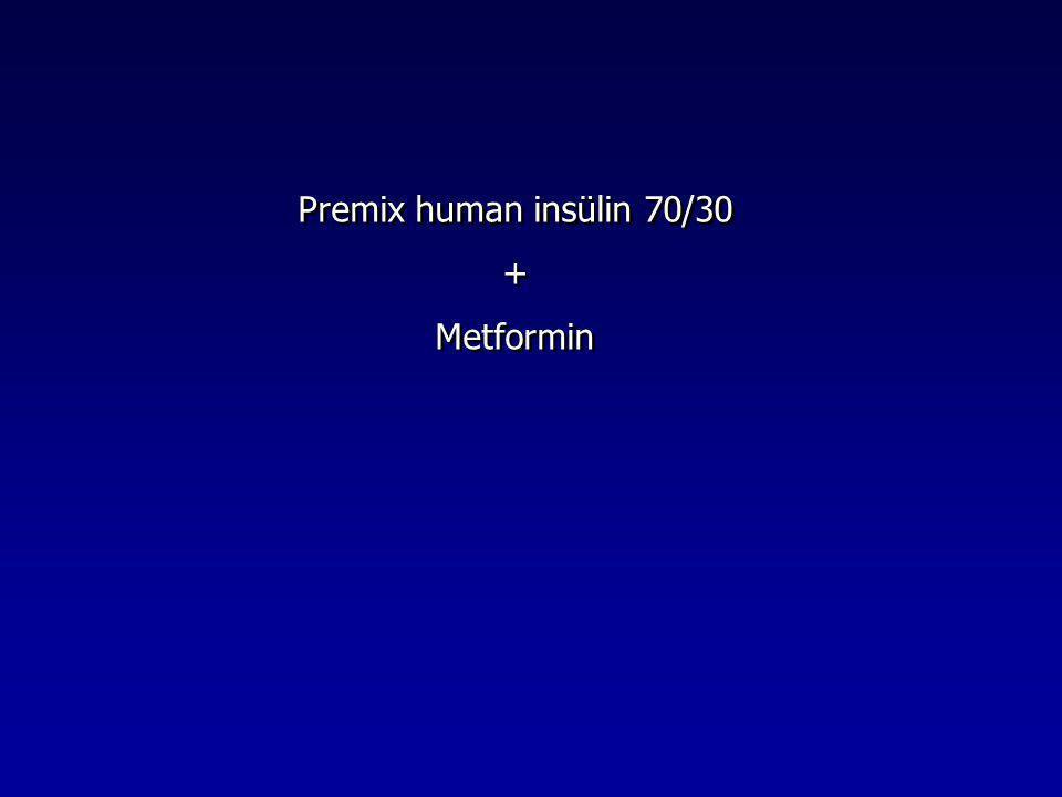 Premix human insülin 70/30 + Metformin Premix human insülin 70/30 + Metformin