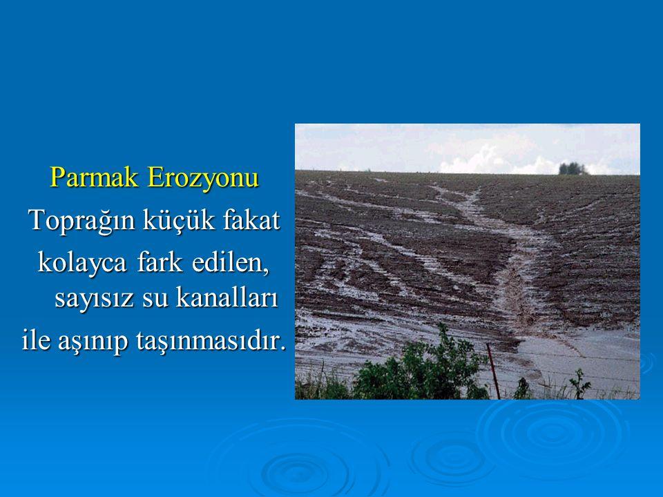 Parmak Erozyonu Toprağın küçük fakat kolayca fark edilen, sayısız su kanalları ile aşınıp taşınmasıdır.