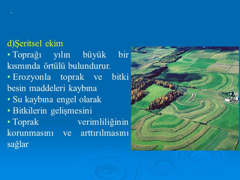 d)Şeritsel ekim Toprağı yılın büyük bir kısmında örtülü bulundurur.