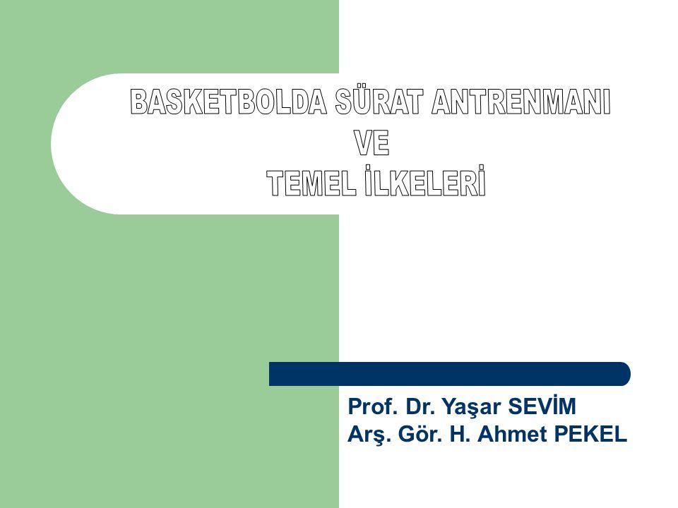 Prof. Dr. Yaşar SEVİM Arş. Gör. H. Ahmet PEKEL
