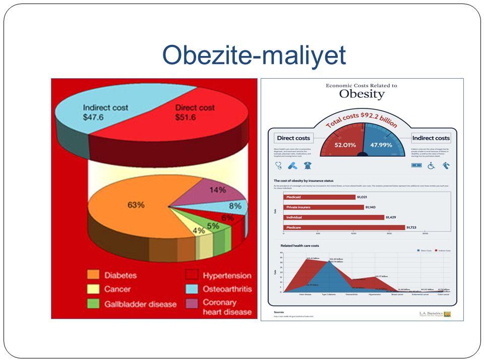 Obezite-maliyet