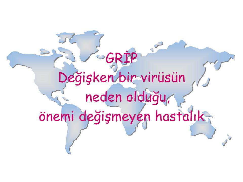GRİP Değişken bir virüsün neden olduğu, önemi değişmeyen hastalık