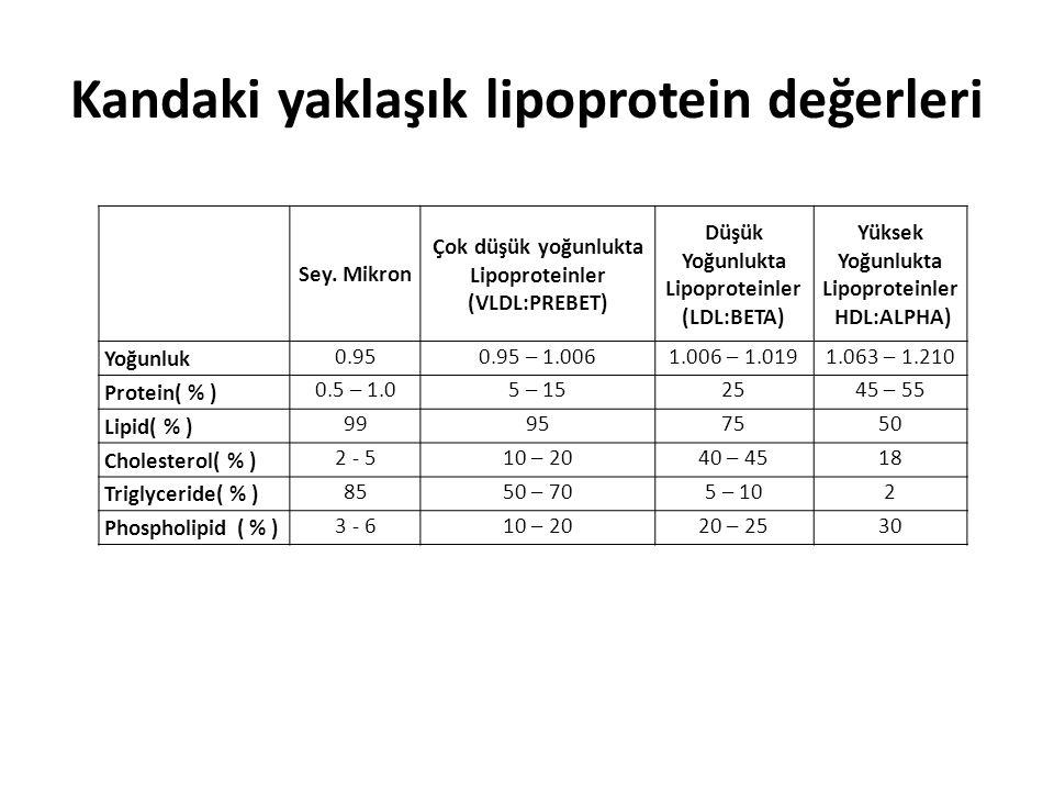 Kandaki yaklaşık lipoprotein değerleri Sey. Mikron Çok düşük yoğunlukta Lipoproteinler (VLDL:PREBET) Düşük Yoğunlukta Lipoproteinler (LDL:BETA) Yüksek