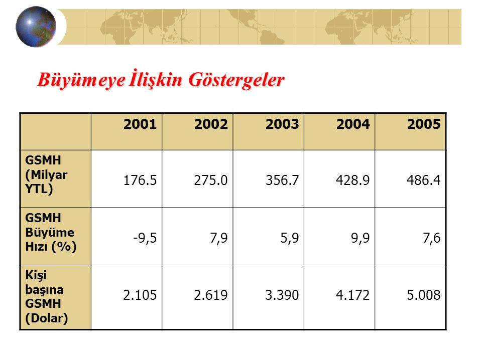 Büyümeye İlişkin Göstergeler 20012002200320042005 GSMH (Milyar YTL) 176.5275.0356.7428.9486.4 GSMH Büyüme Hızı (%) -9,57,95,99,97,6 Kişi başına GSMH (