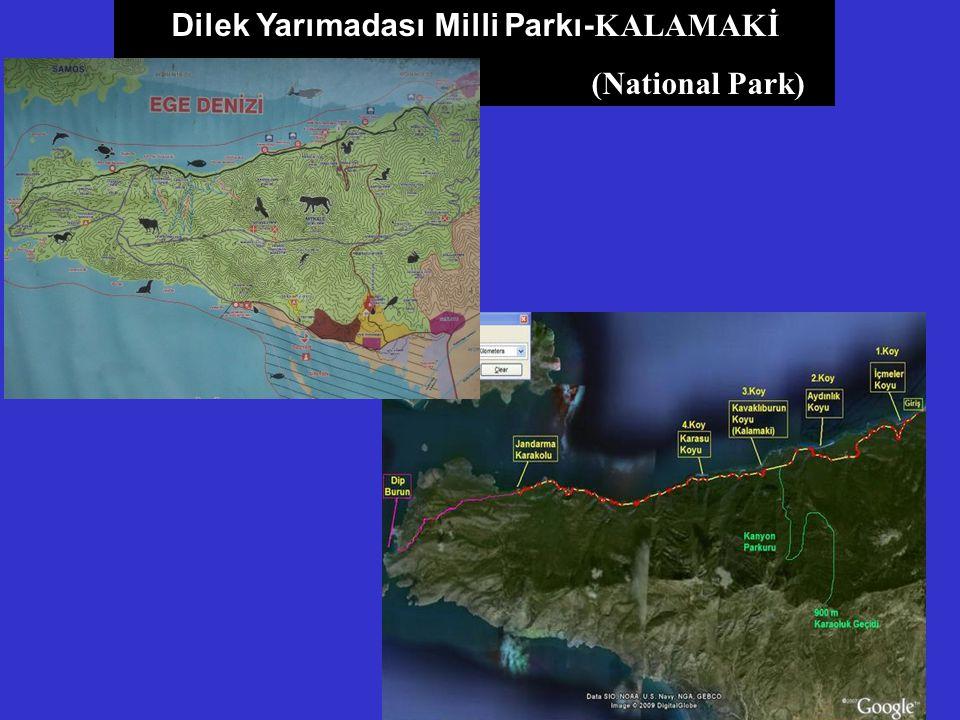 Dilek Yarımadası Milli Parkı- KALAMAKİ (National Park)