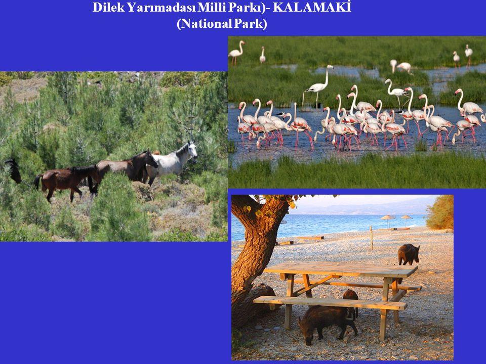 Dilek Yarımadası Milli Parkı)- KALAMAKİ (National Park)