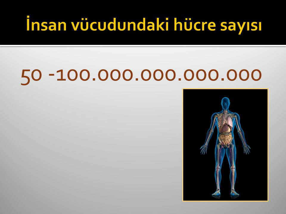 50 -100.000.000.000.000