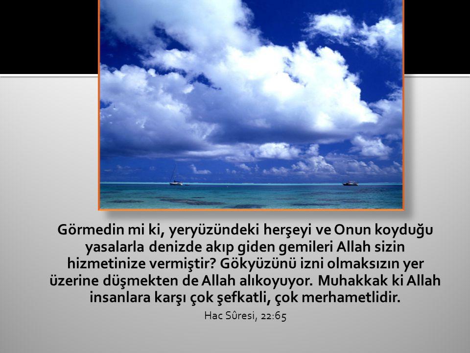 Görmedin mi ki, yeryüzündeki herşeyi ve Onun koyduğu yasalarla denizde akıp giden gemileri Allah sizin hizmetinize vermiştir.