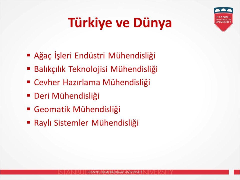 Türkiye ve Dünya  Ağaç İşleri Endüstri Mühendisliği  Balıkçılık Teknolojisi Mühendisliği  Cevher Hazırlama Mühendisliği  Deri Mühendisliği  Geomatik Mühendisliği  Raylı Sistemler Mühendisliği