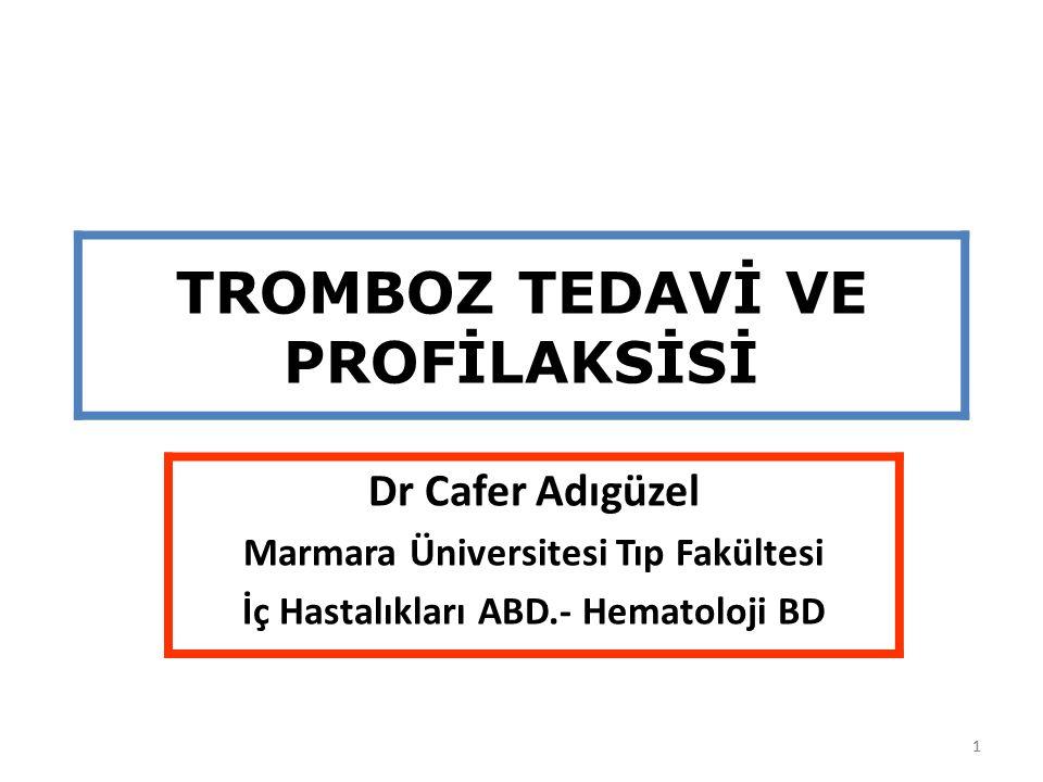 22 YOĞUN BAKIM VE İNMELİ HASTALARDA TROMBOPROFLAKSİ Yoğun bakım ünitesine alınan her hastada VTE risk değerlendirmesi yapılmalı, VTE riski orta-yüksek olanlarda DMAH ya da düşük doz SH ile tromboprofilaksi yapılmalıdır (Çok güçlü öneri).