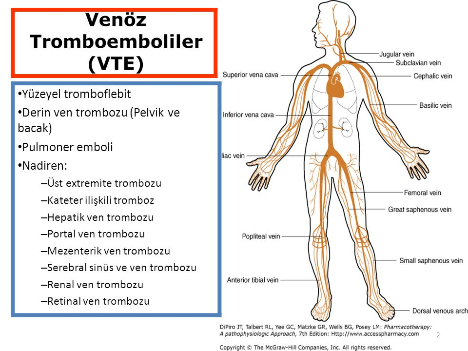 2 Yüzeyel tromboflebit Derin ven trombozu (Pelvik ve bacak) Pulmoner emboli Nadiren: – Üst extremite trombozu – Kateter ilişkili tromboz – Hepatik ven