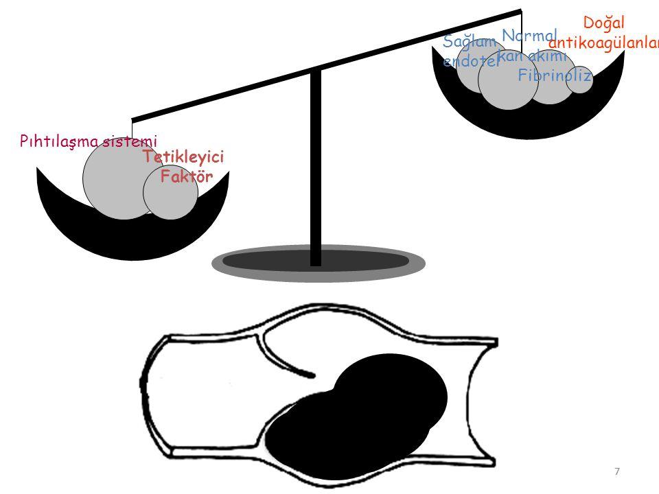 7 Sağlam endotel Normal kan akımı Fibrinoliz Doğal antikoagülanlar Pıhtılaşma sistemi Tetikleyici Faktör 7