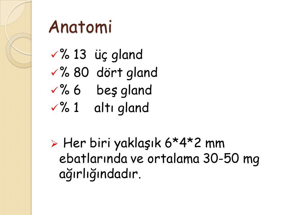 Anatomi % 13 üç gland % 80 dört gland % 6 beş gland % 1 altı gland  Her biri yaklaşık 6*4*2 mm ebatlarında ve ortalama 30-50 mg ağırlığındadır.