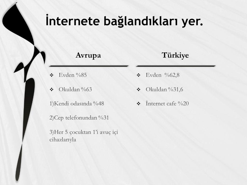 AvrupaTürkiye İnternete bağlandıkları yer.