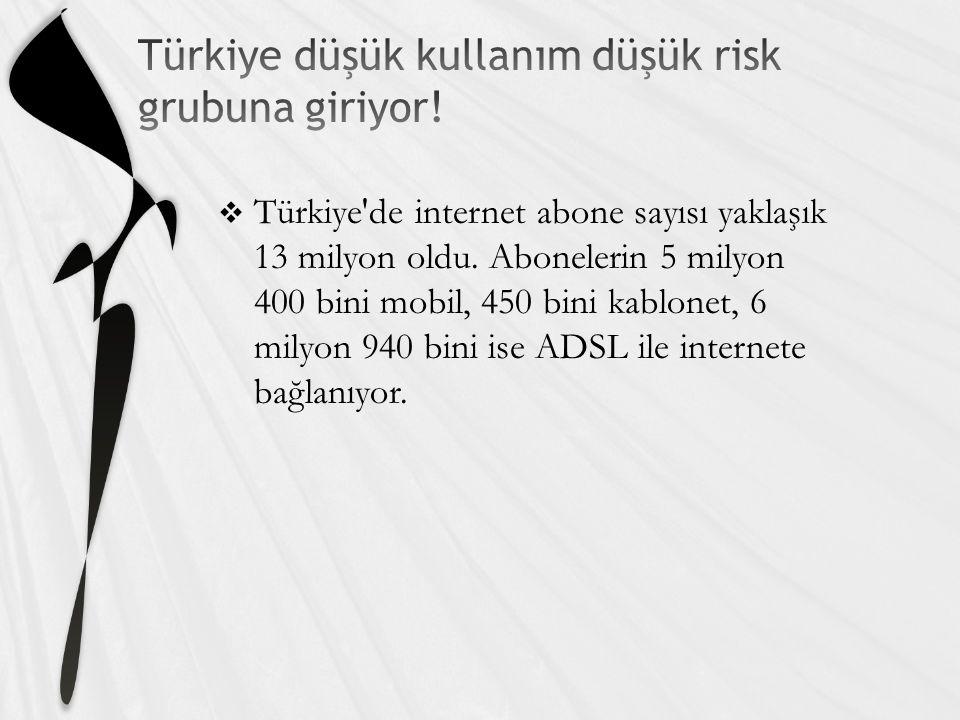  Türkiye de internet abone sayısı yaklaşık 13 milyon oldu.